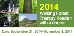 Walking Forest Therapy Roads ® with a Doctor in 2014.